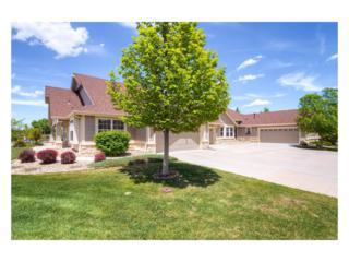 8185 S Winnipeg Circle, Aurora, CO 80016 (MLS #2770006) :: 8z Real Estate
