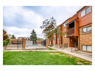 447 Wright Street #118, Lakewood, CO 80228 (MLS #2872978) :: 8z Real Estate