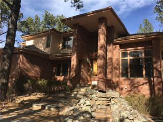 522 Providence Drive, Castle Rock, CO 80108 (#2931660) :: The Peak Properties Group