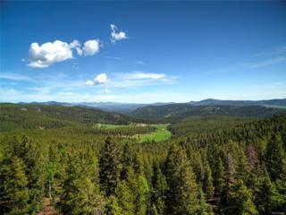 9030 S Warhawk Road, Conifer, CO 80433 (MLS #2965642) :: 8z Real Estate