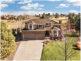 7885 Lakeshore Court, Parker, CO 80134 (#3053043) :: The Peak Properties Group