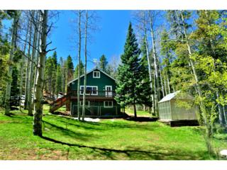 97 Pawnee Trail, Evergreen, CO 80439 (MLS #3149940) :: 8z Real Estate