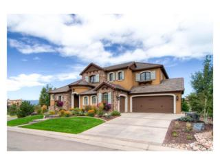 10699 Flowerburst Court, Highlands Ranch, CO 80126 (#3160615) :: The Peak Properties Group