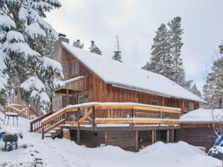380 S Peak To Peak Highway, Nederland, CO 80466 (MLS #3219438) :: 8z Real Estate