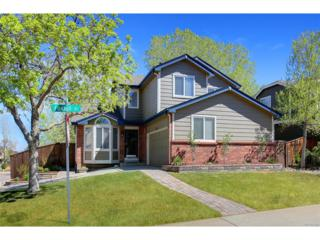 3197 Foxhill Place, Highlands Ranch, CO 80129 (#3294783) :: The Peak Properties Group