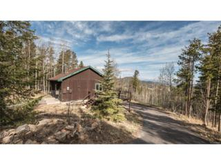 20231 Maxwell Drive, Morrison, CO 80465 (MLS #3354776) :: 8z Real Estate