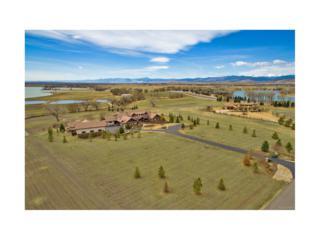 9722 Meadow Ridge Lane, Longmont, CO 80504 (MLS #3499321) :: 8z Real Estate