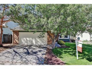 454 Spring Grove Avenue, Highlands Ranch, CO 80126 (MLS #3544529) :: 8z Real Estate
