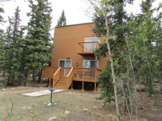 1156 Warpath Road, Como, CO 80432 (MLS #3574015) :: 8z Real Estate