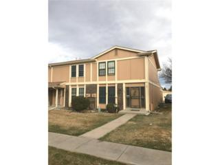 12020 E Canal Drive, Aurora, CO 80011 (#3624400) :: The Peak Properties Group