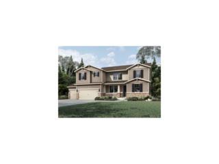 5763 Desert Inn Loop, Elizabeth, CO 80107 (MLS #3656603) :: 8z Real Estate