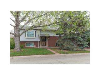 11449 Ogden Street, Northglenn, CO 80233 (#3713141) :: The Peak Properties Group