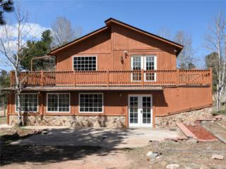 45 Aspen Lane, Bailey, CO 80421 (#3728010) :: The Peak Properties Group