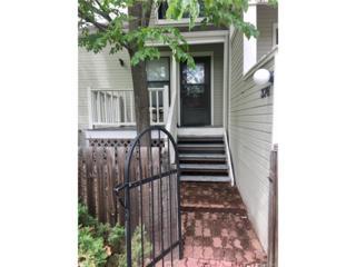 376 Owl Drive, Louisville, CO 80027 (MLS #3973735) :: 8z Real Estate