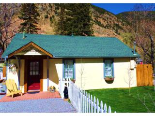 1021 Griffith Street, Georgetown, CO 80444 (MLS #4041036) :: 8z Real Estate