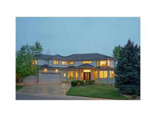 16408 E Dorado Avenue, Centennial, CO 80015 (MLS #4064810) :: 8z Real Estate