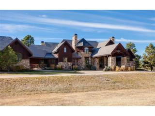 8685 Witez Court, Parker, CO 80134 (MLS #4123989) :: 8z Real Estate