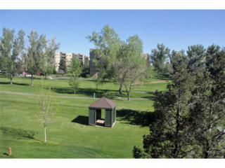 14091 E Marina Drive #201, Aurora, CO 80014 (MLS #4148751) :: 8z Real Estate