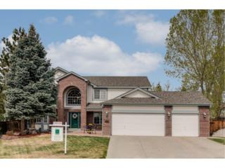 9309 Sand Hill Way, Highlands Ranch, CO 80126 (MLS #4153666) :: 8z Real Estate