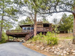 28229 Fireweed Drive, Evergreen, CO 80439 (MLS #4323537) :: 8z Real Estate