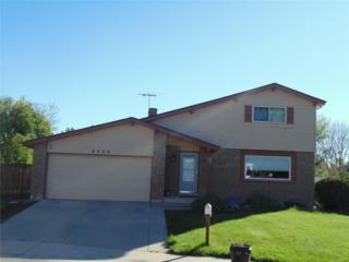 6258 S Everett Court, Littleton, CO 80123 (MLS #4403629) :: 8z Real Estate