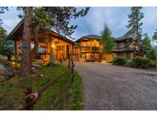 34750 Fox Ridge Road, Evergreen, CO 80439 (MLS #4444526) :: 8z Real Estate