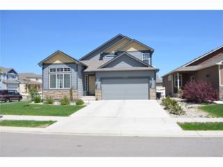 2432 Sunbury Lane, Fort Collins, CO 80524 (MLS #4481791) :: 8z Real Estate