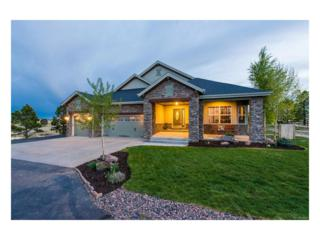 2486 Antelope Ridge Trail, Parker, CO 80138 (#4509662) :: The Peak Properties Group