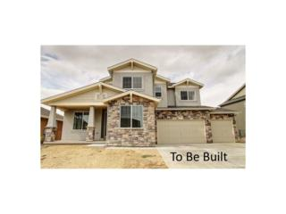 2265 Stonefish Drive, Windsor, CO 80550 (MLS #4550371) :: 8z Real Estate