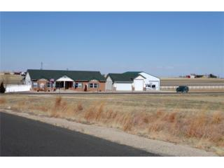 29071 E 167th Avenue, Brighton, CO 80603 (#4552778) :: The Peak Properties Group