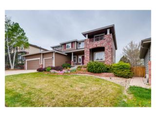 10053 Glenstone Circle, Highlands Ranch, CO 80130 (#4560812) :: The Peak Properties Group