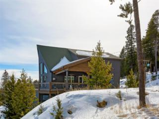 11027 Phoebes Drive, Conifer, CO 80433 (MLS #4602329) :: 8z Real Estate