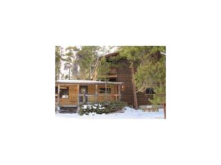 203 Long Trail Road, Black Hawk, CO 80422 (#4705392) :: Thrive Real Estate Group