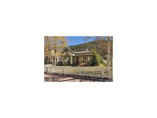 300 Argentine Street, Georgetown, CO 80444 (MLS #4731575) :: 8z Real Estate