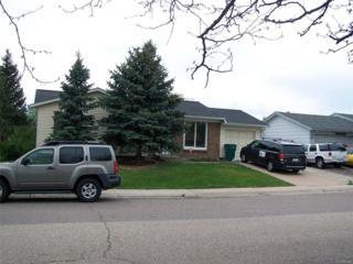 4309 S Xenon Street, Morrison, CO 80465 (MLS #4777264) :: 8z Real Estate