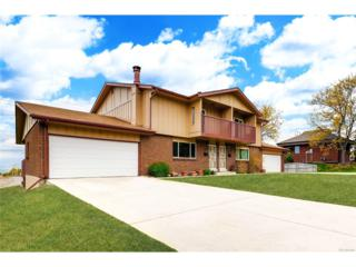 1064 S Alkire Street, Lakewood, CO 80228 (#5020109) :: Thrive Real Estate Group