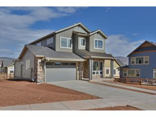 347 Mcconnell Drive, Lyons, CO 80540 (MLS #5064183) :: 8z Real Estate