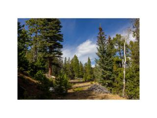 10 Beaver Brook Canyon Road, Evergreen, CO 80439 (#5141662) :: The Peak Properties Group