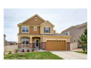 18210 Dewhurst Lane, Parker, CO 80134 (#5207524) :: The Peak Properties Group