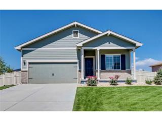 9525 Dexter Lane, Thornton, CO 80229 (#5213253) :: The Peak Properties Group