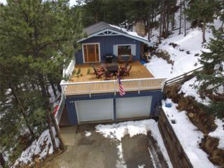 235 Lamertine Place, Idaho Springs, CO 80452 (MLS #5221841) :: 8z Real Estate
