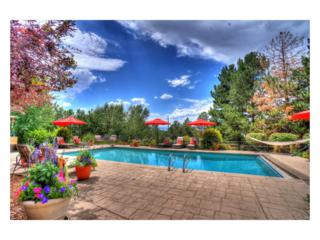 6350 Greenbriar Drive, Cherry Hills Village, CO 80111 (#5232255) :: Thrive Real Estate Group