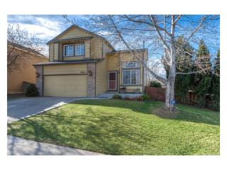 9603 Newcastle Drive, Highlands Ranch, CO 80130 (#5267915) :: The Peak Properties Group
