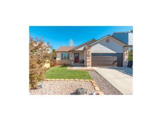3080 Leoti Drive, Colorado Springs, CO 80922 (MLS #5333819) :: 8z Real Estate