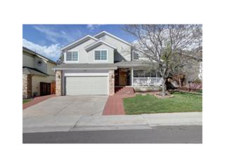 7085 Newhall Drive, Highlands Ranch, CO 80130 (#5386333) :: The Peak Properties Group
