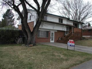922 W 101st Avenue, Northglenn, CO 80260 (#5386495) :: The Peak Properties Group
