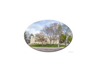 1 Aldershot Court, Highlands Ranch, CO 80130 (MLS #5486201) :: 8z Real Estate