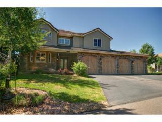 711 Summerwood Drive, Golden, CO 80401 (#5589580) :: The Peak Properties Group