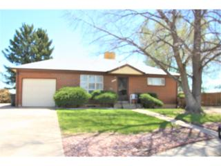 11224 Claude Court, Northglenn, CO 80233 (#5666276) :: The Peak Properties Group