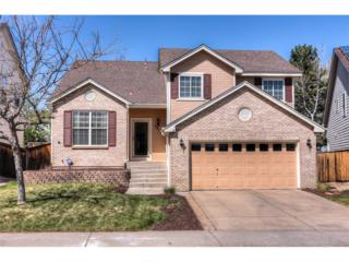 9814 Foxhill Circle, Highlands Ranch, CO 80129 (MLS #5683875) :: 8z Real Estate